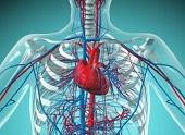 Klasyfikowanie i leczenie niewydolności serca