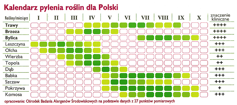 Kalendarz pylenia roślin dla Polski