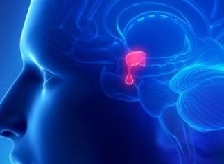 zespół Cushinga - dysfunkcja przysadki mózgowej